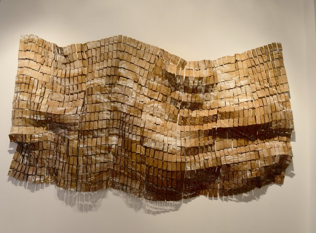 "Photograph of Dominga Opazo's piece ""Corrosion"" made of pieces screen printed cardboard, hung on the wall."